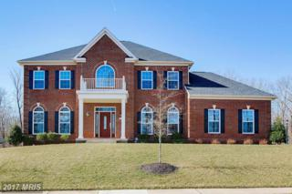 21935 Knob Hill Place, Ashburn, VA 20148 (#LO9886971) :: Pearson Smith Realty