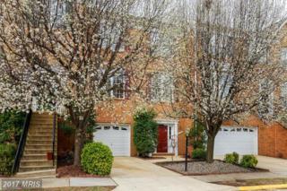 43734 Clemens Terrace, Ashburn, VA 20147 (#LO9887402) :: LoCoMusings