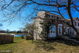 21228 Hedgerow Terrace, Ashburn, VA 20147 (#LO9887894) :: LoCoMusings