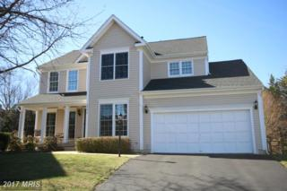 20675 Settlers Point Place, Sterling, VA 20165 (#LO9888674) :: LoCoMusings