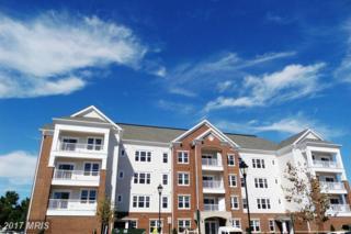 20650 Hope Spring Terrace #103, Ashburn, VA 20147 (#LO9888809) :: LoCoMusings