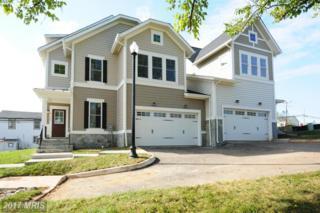 43741 Sweet Goldenrod Square Three, Ashburn, VA 20147 (#LO9889479) :: LoCoMusings