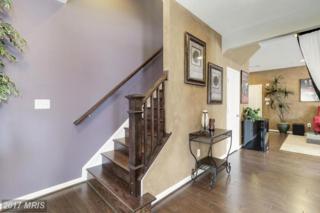 42259 Riggins Ridge Terrace, Ashburn, VA 20148 (#LO9889681) :: LoCoMusings
