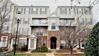 46944 Courtyard Square #300, Sterling, VA 20164 (#LO9890073) :: LoCoMusings