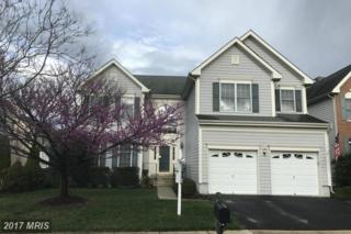 25454 Gimbel Drive, Chantilly, VA 20152 (#LO9890151) :: Robyn Burdett Real Estate Group