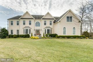 23424 Summerstown Place, Dulles, VA 20166 (#LO9890700) :: LoCoMusings