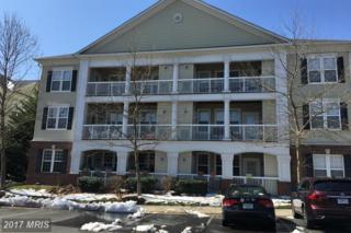 42539 Mayflower Terrace #102, Ashburn, VA 20148 (#LO9890967) :: LoCoMusings