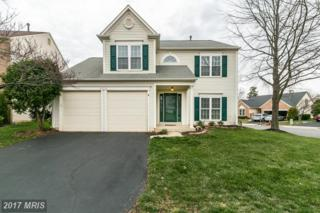46532 Hollymead Place, Sterling, VA 20165 (#LO9892751) :: LoCoMusings