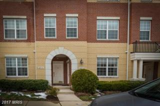 42592 Hollyhock Terrace, Ashburn, VA 20148 (#LO9892898) :: LoCoMusings