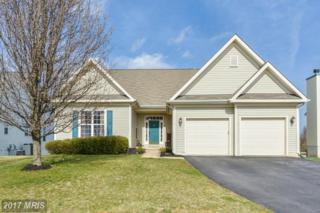 17144 Magic Mountain Drive, Round Hill, VA 20141 (#LO9894130) :: LoCoMusings