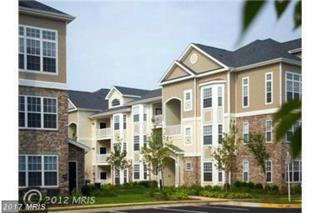 501 Sunset View Terrace SE #208, Leesburg, VA 20175 (#LO9894494) :: Pearson Smith Realty