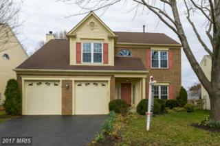 46528 Hollymead Place, Sterling, VA 20165 (#LO9894602) :: LoCoMusings
