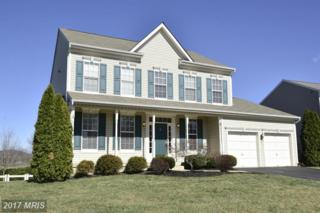 17132 Magic Mountain Drive, Round Hill, VA 20141 (#LO9894967) :: LoCoMusings