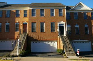 142 Ivy Hills Terrace, Purcellville, VA 20132 (#LO9895036) :: LoCoMusings