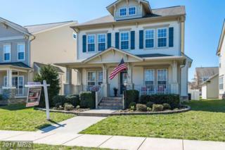 23334 Higbee Lane, Ashburn, VA 20148 (#LO9895062) :: Robyn Burdett Real Estate Group