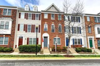 42840 Smallwood Terrace, Chantilly, VA 20152 (#LO9895181) :: Robyn Burdett Real Estate Group