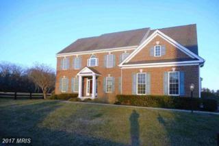 18228 Oakridge Hamlet Place, Purcellville, VA 20132 (#LO9895691) :: LoCoMusings