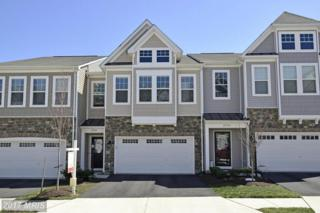 23554 Kingsdale Terrace, Ashburn, VA 20148 (#LO9896343) :: LoCoMusings