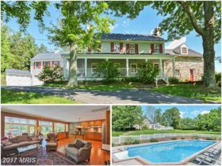 14774 Milltown Road, Waterford, VA 20197 (#LO9896896) :: Robyn Burdett Real Estate Group