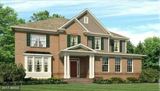 40597 Aldie Springs Drive, Aldie, VA 20105 (#LO9897317) :: LoCoMusings