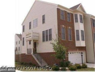 43727 Banshee Heights Terrace, Ashburn, VA 20148 (#LO9898384) :: Robyn Burdett Real Estate Group