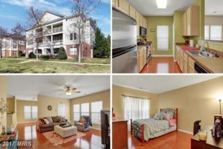 22691 Blue Elder Terrace #301, Ashburn, VA 20148 (#LO9898976) :: Pearson Smith Realty