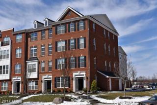 43031 Clarks Mill Terrace, Ashburn, VA 20148 (#LO9899710) :: Robyn Burdett Real Estate Group