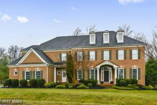 40680 Black Gold Place, Leesburg, VA 20176 (#LO9899913) :: Pearson Smith Realty