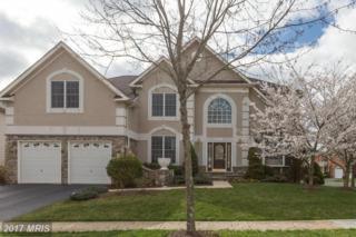 43133 Valiant Drive, Chantilly, VA 20152 (#LO9899934) :: Robyn Burdett Real Estate Group