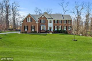 15203 Pavlo Place, Waterford, VA 20197 (#LO9900676) :: Pearson Smith Realty