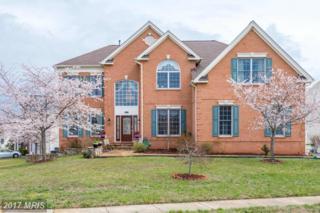 22728 Dulles Gap Court, Ashburn, VA 20148 (#LO9900699) :: Robyn Burdett Real Estate Group
