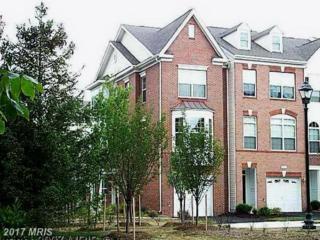 20423 Trails End Terrace, Ashburn, VA 20147 (#LO9900883) :: Pearson Smith Realty