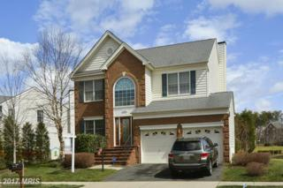 25961 Stinger Drive, Chantilly, VA 20152 (#LO9900917) :: LoCoMusings