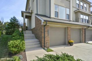 23302 Evening Primrose Square, Ashburn, VA 20148 (#LO9901068) :: Robyn Burdett Real Estate Group