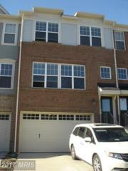 43458 Hopestone Terrace, Chantilly, VA 20152 (#LO9901116) :: Robyn Burdett Real Estate Group