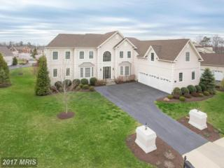 43575 World Woods Court, Ashburn, VA 20147 (#LO9901430) :: Pearson Smith Realty