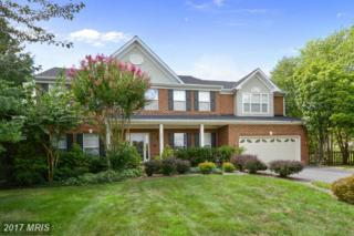 206 Paddock Court NW, Leesburg, VA 20176 (#LO9901462) :: Robyn Burdett Real Estate Group
