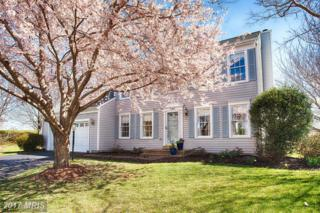 37878 Wexford Place, Purcellville, VA 20132 (#LO9901545) :: Pearson Smith Realty