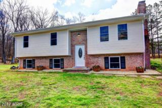 20688 Gleedsville Road, Leesburg, VA 20175 (#LO9901857) :: Pearson Smith Realty