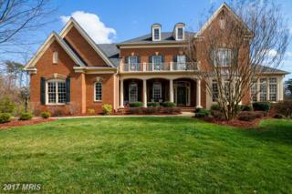 27370 Bridle Place, Chantilly, VA 20152 (#LO9902933) :: Pearson Smith Realty