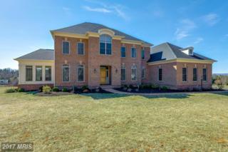 16931 Determine Court, Leesburg, VA 20176 (#LO9903671) :: Pearson Smith Realty