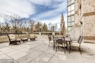 19355 Cypress Ridge Terrace #102, Leesburg, VA 20176 (#LO9903786) :: Pearson Smith Realty