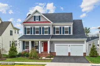21147 Potomac Trail Circle, Ashburn, VA 20148 (#LO9909636) :: Pearson Smith Realty