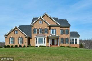 15939 Waterford Creek Circle, Hamilton, VA 20158 (#LO9914070) :: Pearson Smith Realty