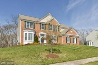 21155 White Clay Place, Leesburg, VA 20175 (#LO9914181) :: Pearson Smith Realty