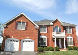 43397 Barnstead Drive, Ashburn, VA 20148 (#LO9914862) :: LoCoMusings