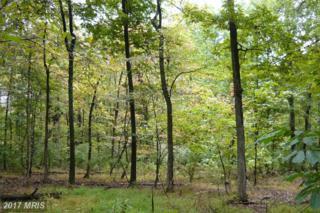 Steptoe Hill Road, Middleburg, VA 20117 (#LO9915495) :: LoCoMusings