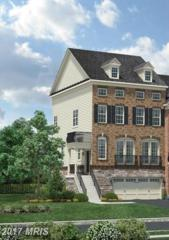25020 Cambridge Hill Terrace, Chantilly, VA 20152 (#LO9915598) :: Circadian Realty Group