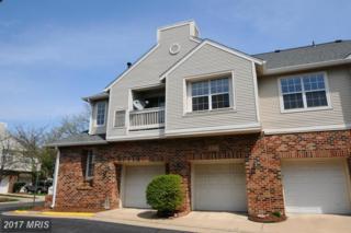 45061 Brae Terrace #204, Ashburn, VA 20147 (#LO9915626) :: LoCoMusings