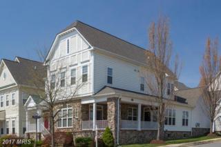 36099 Legend Drive, Round Hill, VA 20141 (#LO9916011) :: LoCoMusings